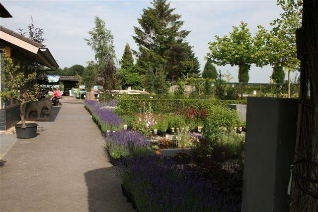 tuincentrum12_126.jpg