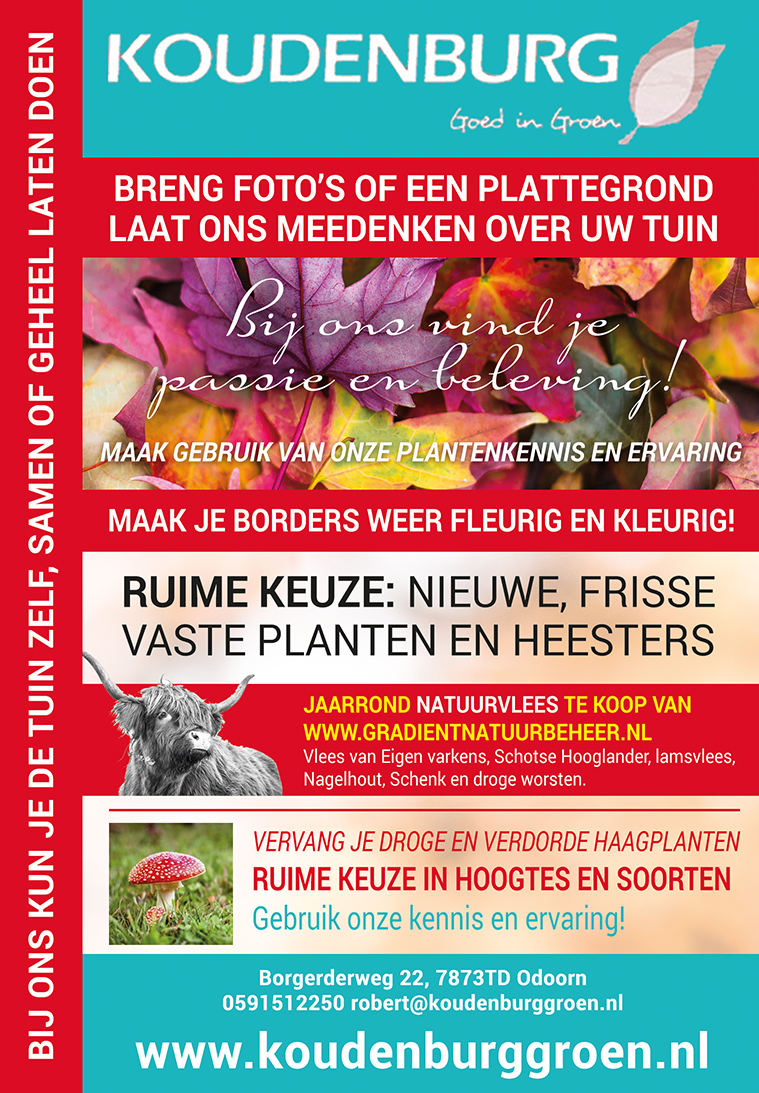 advertentie week 41
