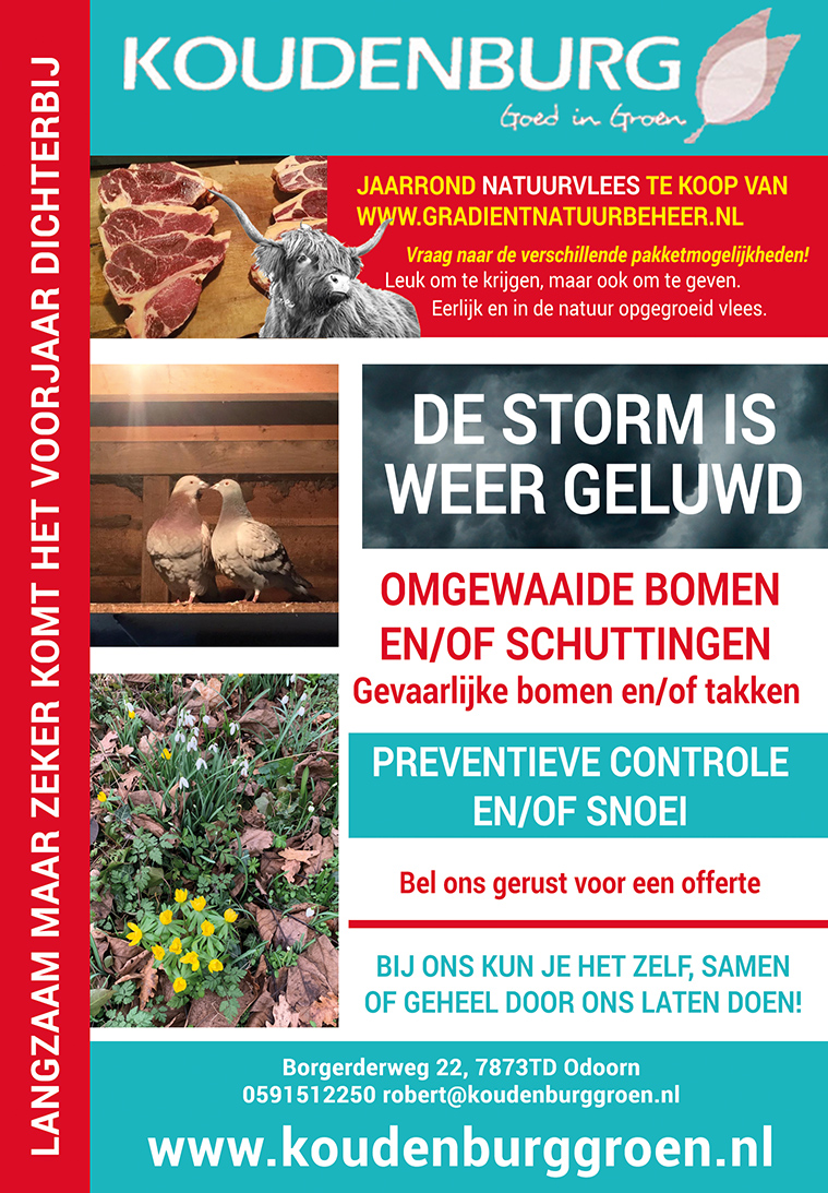 Advertentie week 7 2020