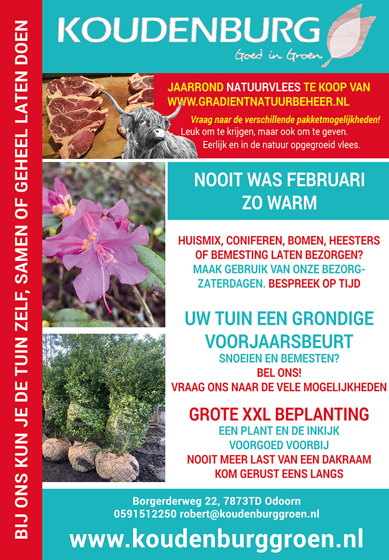 Advertentie week 8 2020