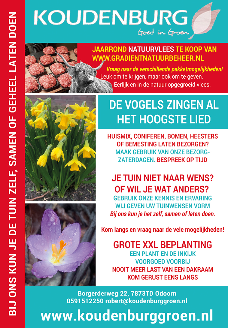 Advertentie week 9 2020