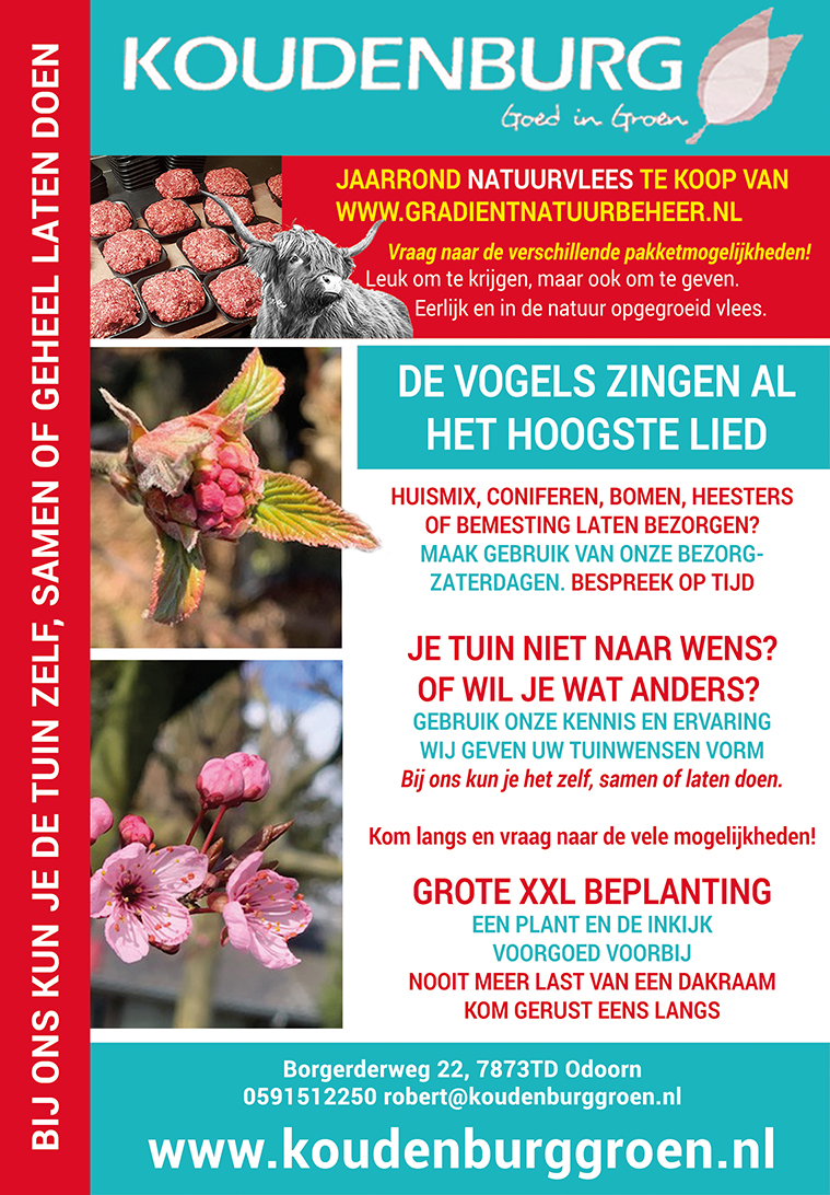 Advertentie week 11 2020