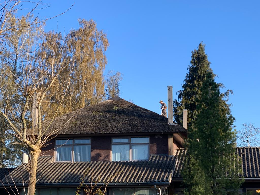 Rieten dak 2