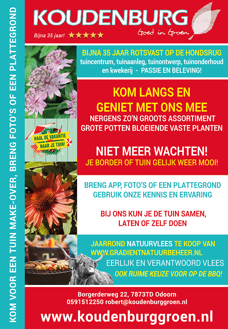 advertentie week 27 2020