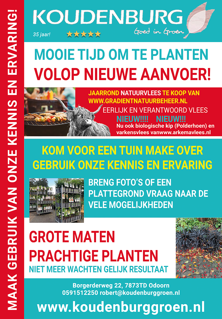 advertentie week 42 2020